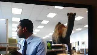 Geico Hump Day Commercial Mike Mike Mike 免费在线视频最佳电影电视