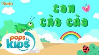 🍏🌼🌊 Mầm Chồi Lá Tập 65 - Con Cào Cào | Nhạc Thiếu Nhi Cho Bé | Vietnamese Songs For Kids