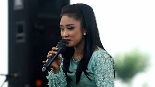 Download lagu Anisa Rahma Cemara Biru Mp3