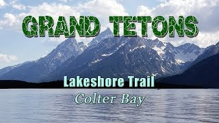 Lakeshore Trail, Grand Teton National Park