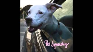 Pet Symmetry - Please Don't Tell My Father That I Used His 1996 Honda Accord To Destroy The Town...