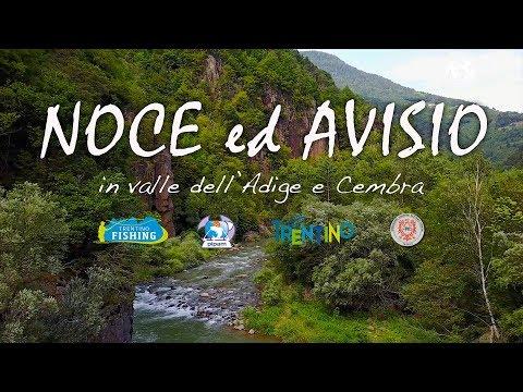 Noce ed Avisio in Valle dell'Adige e Cembra