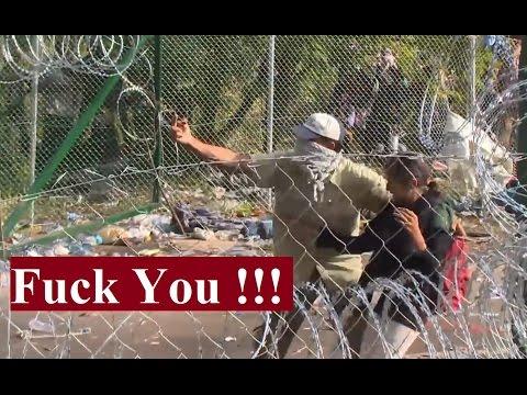 Hongrie : des migrants manipulent des enfants pour faire face à la police
