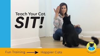 Teach Your Cat To Sit With Clicker Training