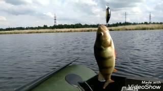 Рыбалка в челябинске озеро смолино