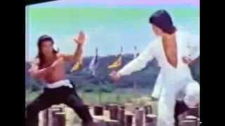 Secret of the shaolin poles - Final fight