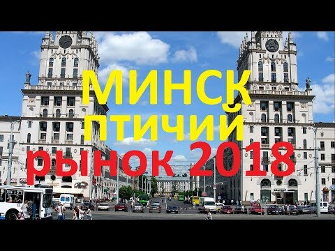 Птичий рынок Белоруссия город Минск