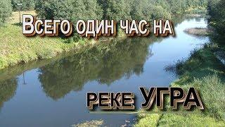Рыбалка на реке угре в смоленской области