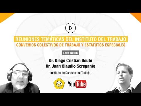 REUNIONES TEMÁTICAS DEL INSTITUTO