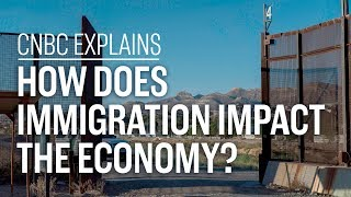 How does immigration impact the economy? | CNBC Explains