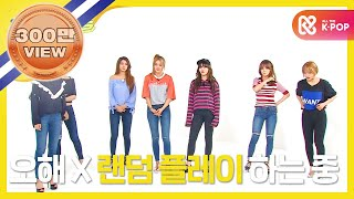 (Weeklyidol EP.251) AOA Random Play Dance Full Ver.