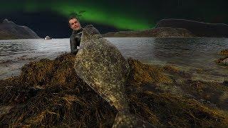 Spearfishing Giant Atlantic HALIBUT in Norway
