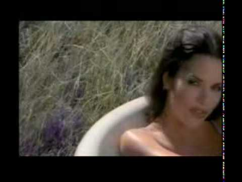 what can I do to make you love me - the corrs .flv