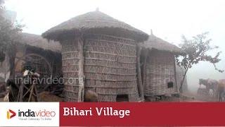 Cool Morning in a Bihari Village