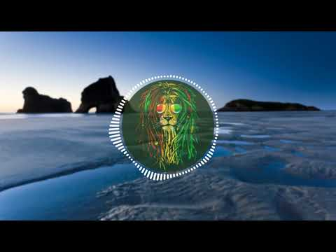 Lost Tribe Aotearoa – Irie (Remix) ft. Sir T