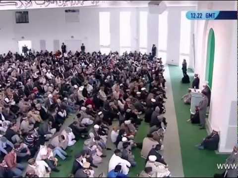 Rückblick 2012-2013 - Aktionen der Ahmadiyya Muslim Gemeinde Deutschland