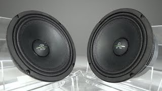 Review of the loudest mid-range speakers Arnold vs Sylvester