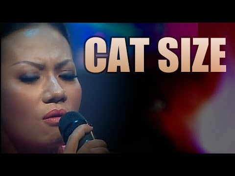 """Cat Size"" - Indah Winar."