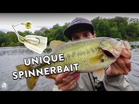 Fall Spinnerbait Fishing Tips | Imitating Baitfish and Covering Water