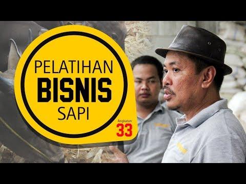 PELATIHAN BISNIS SAPI POTONG BATCH 33