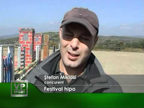 Festival hipo