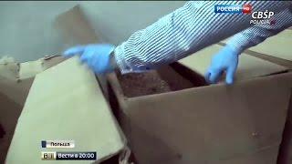 Рабы с Украины: власти Польши ликвидировали нелегальную фабрику по производству сигарет