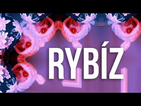 DMNT - Rybíz (celej song)