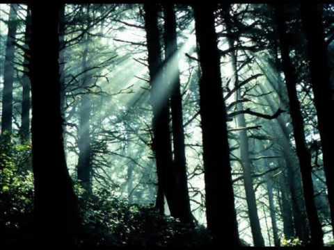 If Tomorrow Never Comes chords & lyrics - Ronan Keating