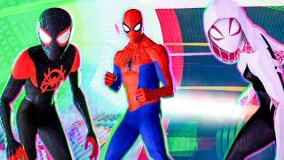 SPIDER-MAN: INTO THE SPIDER-VERSE All Best Movie Clips (2018)