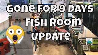 Gone for 9 days!!! Fish Room Tour! See what happened! Fish Room VLOG