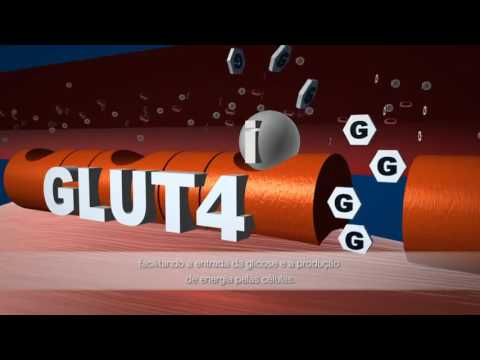 Baixa insulina devido à dieta