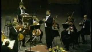 Shlomo Mintz: Four Seasons Autumn III. Allegro