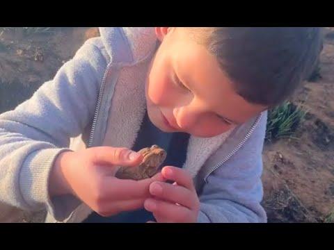 Jong natuurliefhebber