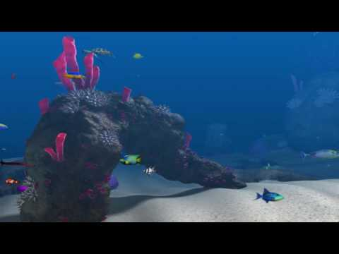 Big Kahuna Reef - Completed Reef for 7 minutes (soothing music)