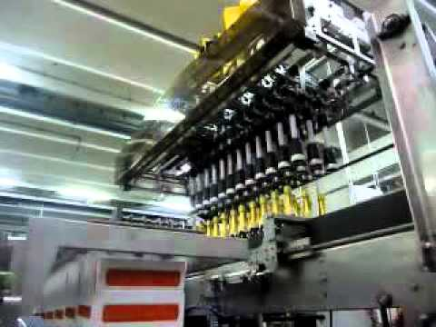 Robotic Case Packer II