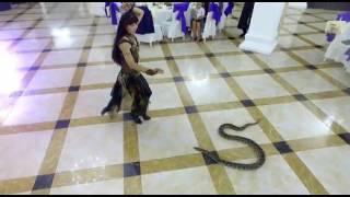 Айым Махметова танец со змеёй