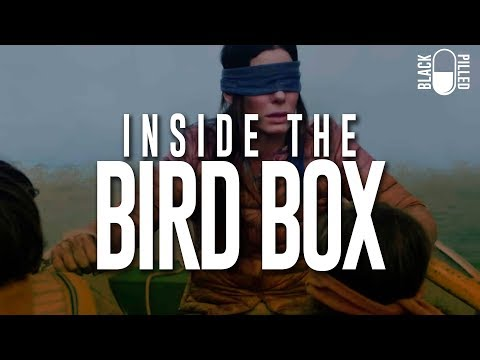Inside the Bird Box