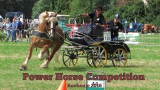 Power Horse Competition Rockanje
