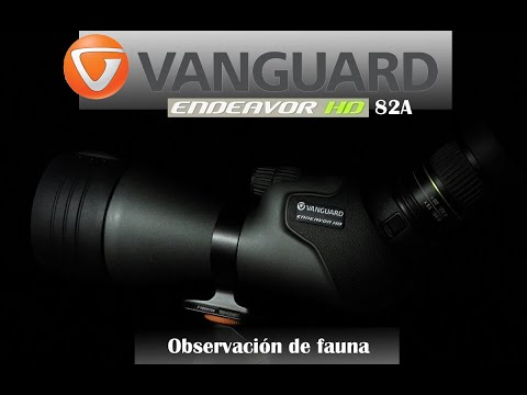 Review Vanguard Endeavor HD 82A: observando fauna con Club de Caza