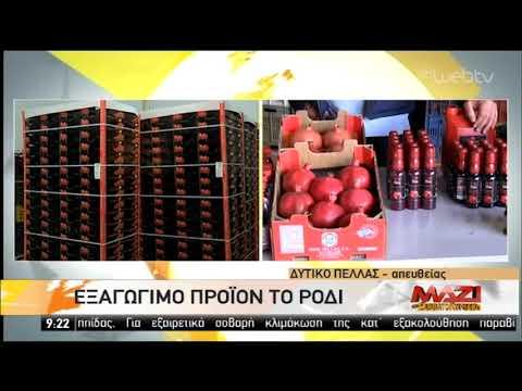 Εξαγώγιμο προϊόν της Ελλάδας το ρόδι   05/10/2019   ΕΡΤ