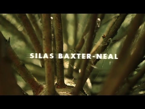 Video Vortex: Silas Baxter-Neal, Perpetual Motion | TransWorld SKATEboarding