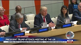 WATCH: President Donald Trump Meeting at the United Nations 9/18/17