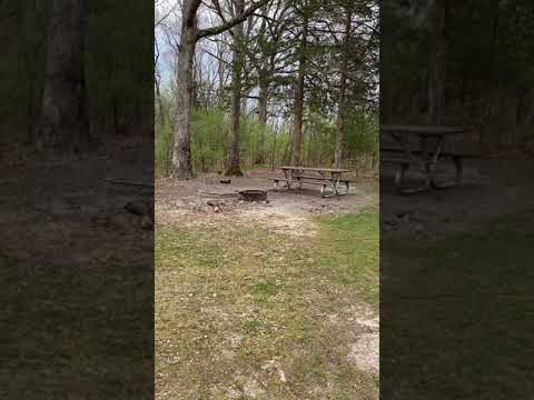 Video Of Little Lost Creek Conservation Area, MO