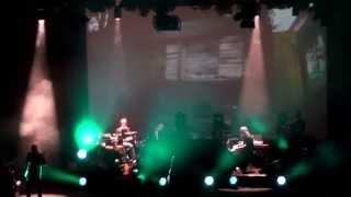 Steven Wilson - Insurgentes (live @ Loreley 2013)