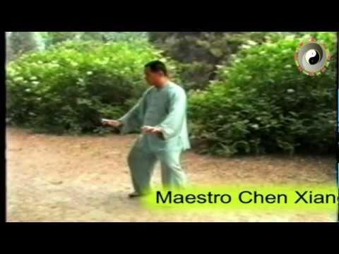Evolución maestro Chen Xiang