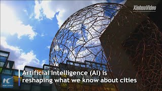 AI-driven technologies reshape city life in Beijing