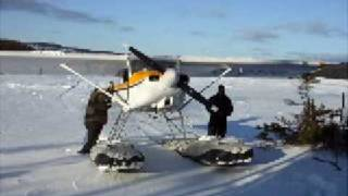 preview picture of video 'Murphy Rebel on a Frozen Pond on the Baie Verte Penninsula in Newfoundland & Labrador'