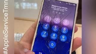 Замена стекла и задней крышки iPhone 8 в Тюмени