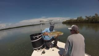 GOPRO: Tampa Bay Fly Fishing | Redfish | Permit | Tarpon | Flyrod only - 2016 - Insane Trip!!