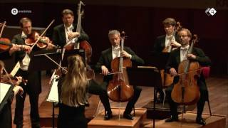 Elgar: Serenade for Strings - Concertgebouw Chamber Orchestra - Live concert HD